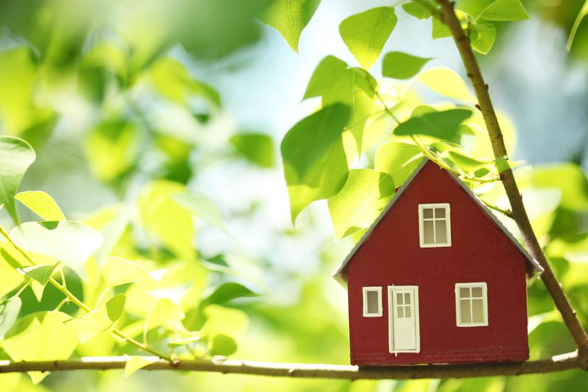 Дачная амнистия: регистрация объектов недвижимости