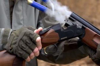 разрешение на оружие как получить